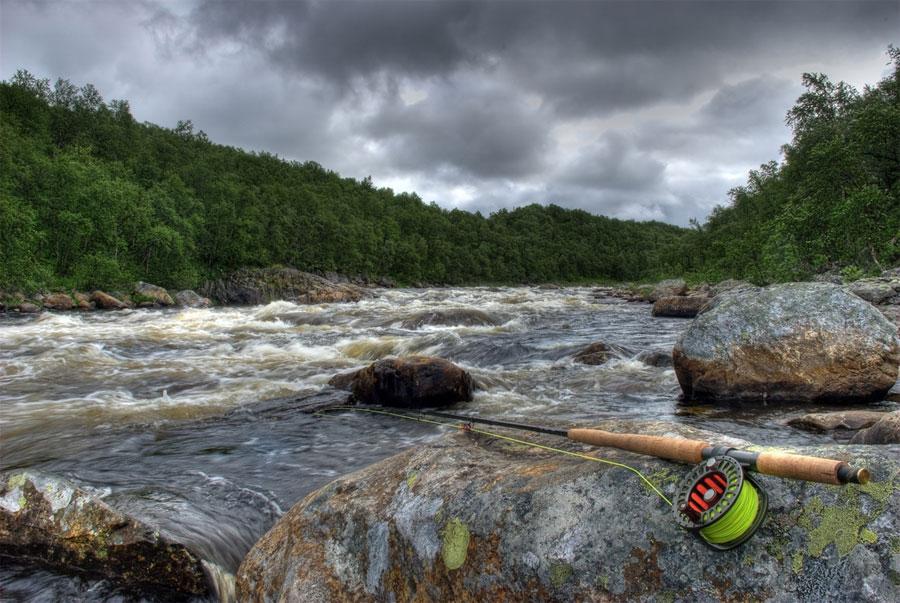 норвежский сайт погоды в дальних зеленцах условия гарантии Покупая