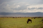 afrika(38).jpg