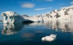 antarktida(126).jpg