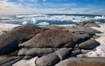 antarktida(144).jpg