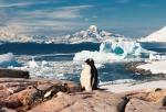 antarktida(147).jpg