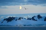 antarktida(173).jpg