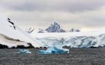 antarktida(21).jpg