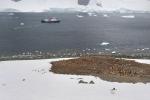 antarktida(33).jpg