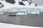 antarktida(34).jpg