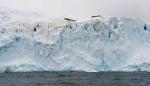 antarktida(55).jpg