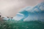 antarktida(57).jpg