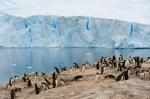 antarktida(66).jpg