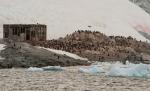 antarktida(85).jpg