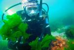 podvodnie-pogruzheniya(1).jpg
